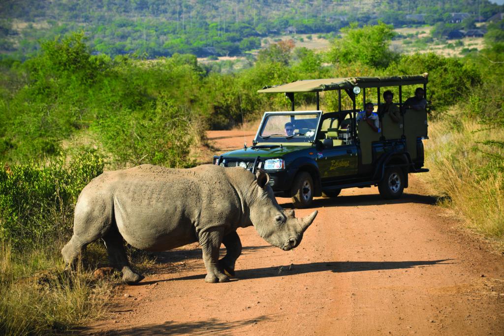 Bakubung Bush Lodge_Wildlife_Game Drives (14)
