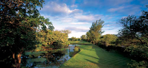 The Durban Country Club: Golf In The Garden Route & South Africa