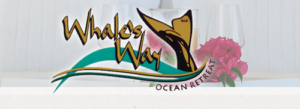 Whales Way Ocean Retreat - golfinthegardenroute.com